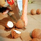 Man, coconuts, apart-saws