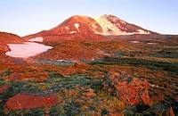 Meadows at highcamps and sunset colours of the northern slope of Mount Adams. Gifford Pinchot National Forest. Cascade Mountain Range. Washington. USA