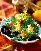 Mixed salad leaves with croutons