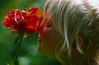 Girls, poppy, profile, smell, summer, child, blond, eyes closed, childhood, artless, carefree, nature-loving, scent, bloom, red, plant, poppy bloom, p...