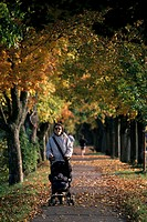 Forest path, woman, strollers, walk, autumn, park, forest, way, mother, toddler, autumn walk, leisure time, activity, together, welfare, education, fa...