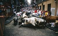 Running of the bulls. San Fermin. Pamplona. Navarre. Spain