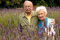 Older couple in lavender field