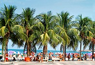 bathing, beach, Brazil, South America, Copacabana, folks, holidays, no model release, palm trees, people, person, Ri