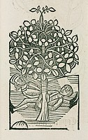 Woodcut of a tree which was believed to exhale a narcotic poison. Here, two men lie beneath its branches, apparently in the sleep of death. Illustrati...