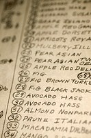 Close-up of a hand-written list of trees.