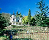 St Clement Vineyards. St Helena. Napa Valley. California. USA