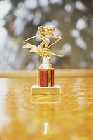 Skiing Trophy