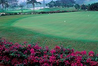 Golf course at Sungai Buloh, Malaysia