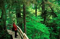 adventure, bar, British Columbia, Canada, North America, America, hiking, , nature, Pacific Rim, natio