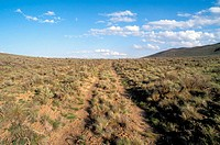 Oregon trail ruts along Highway 86 at Flagstaff Hill. Baker City. Oregon. USA