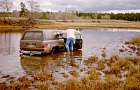 Canada, British Columbia interior. Four wheel drive truck sinking in marsh near Loon lake