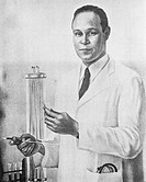 Charles Drew (1904-1950), Afro-American doctor, holding a pipette and test tube. Drew was born in Washington D.C., USA, and was an outstanding athlete...