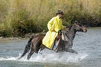Cowboy crossing river. Monatana. USA