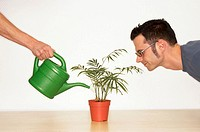 Man watching plant being watered