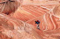 Hiking. 'The Wave', Coyote Buttes, Paria wilderness. Arizona. USA