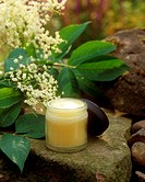 Elderflower ointment (medicinal and skincare remedy)