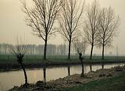 evening, Germany, Europe, nature reserve, Maas Schwalm Nette, North Rhine Westphalia, river scenery, landscape, smok