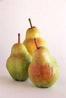 Bartlett pears (Pyrus communis). California, USA