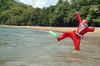 Schwimmender Weihnachtsmann