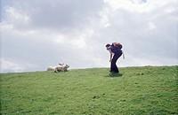 Der Mensch und das Schaf