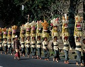 Bali, Asia, Carrying, Festival, Holiday, Indonesia, Landmark, Odalan, Offerings, Temple, Tourism, Travel, Vacation, Women,