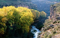Hoces de Alarcón (river gorges) and Júcar river. Cuenca province, Spain