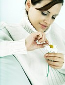 Woman plucking petals from daisy, looking down, close-up