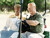 Two Mature Men in a Golf Buggy