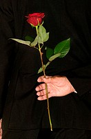 Senior man holding a red rose