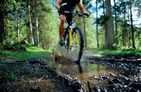 Cyclist on forest muddy path