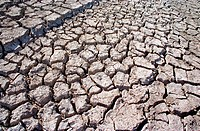 Drought in southern Spain