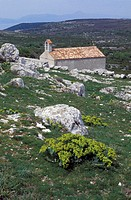 old village church, lubenice, croatia