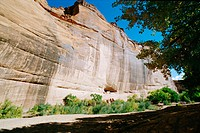 White House ruin. Home of the Anasazi people in Canyon de Chelly. Arizona. USA