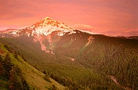 Sunset colours on the western slopes of Mount Hood viewd from the side of Bald Mountain. Mount Hood National Forest, Cascade Mountain Range. Oregon. U...
