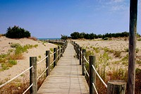 Boardwalk, Ebro River delta Natural Park. Tarragona province, Catalonia, Spain