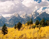 Grand Tetons. Grand Teton National Park. Wyoming. USA