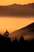 Fall scenic-Smokey Mountains, North Carolina