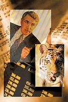 Collage of stock market figures, businessman and tiger