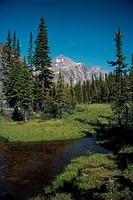 Angel Glacier Mt. Cavel Jasper Nat´l Park, Canada