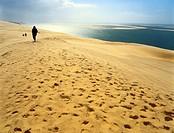 Dune de Pilat, Gironde, Aquitaine, France