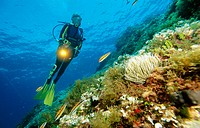 Sea floor with diver, Mediterranean Sea