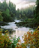 North Umpqua River, Umpqua National Forest. Oregon. USA