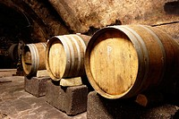 Wooden vats or casks in German wine cellar for vinification of organic wine