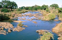 The Sabie River. Kruger National Park. South Africa