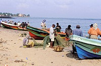 Fishermen and boats on beach. Negombo. Sri Lanka