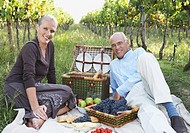 Senior Couple Having a Picnic in a Vineyard