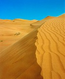 Desert dune in the UAE