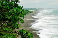 Along the Pacific coast. Costa Rica