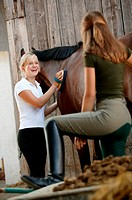 Young women grooming horse (thumbnail)